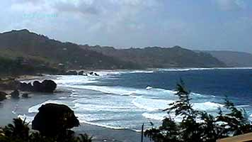 Barbados Bathsheba